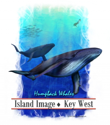 Humpback Whales Island Image version
