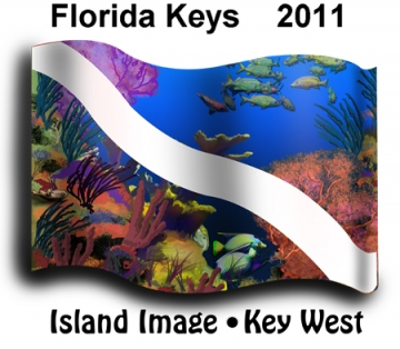 Dive Flag plus Caribbean / Florida Reef = FUN!