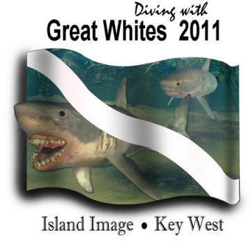 Great Whites + Dive Flag