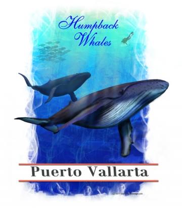 Humpback Whales Puerto Vallarta