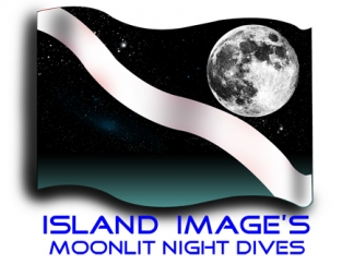 Night Dive Dive Flag design