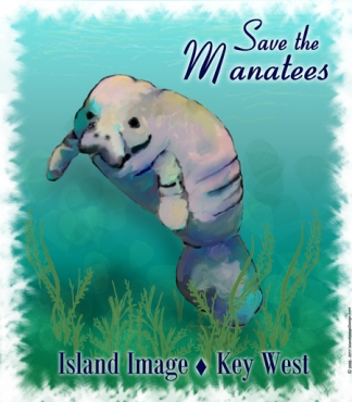 Save The Manatees t shirt